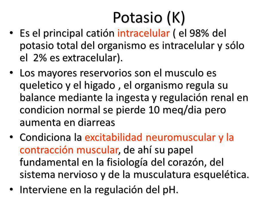 Potasio (K) Es el principal catión intracelular ( el 98% del potasio total del organismo es intracelular y sólo el 2% es extracelular).