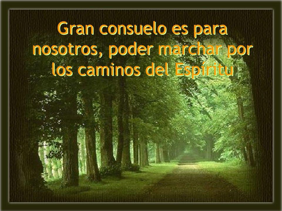 Gran consuelo es para nosotros, poder marchar por los caminos del Espíritu