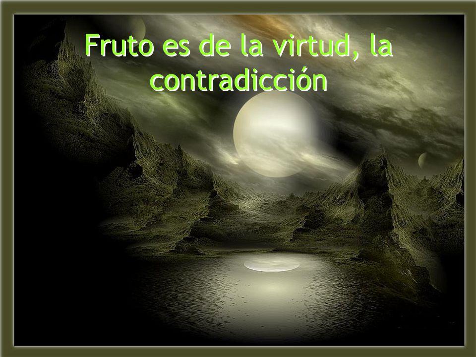 Fruto es de la virtud, la contradicción