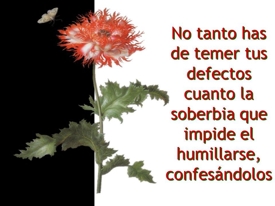 No tanto has de temer tus defectos cuanto la soberbia que impide el humillarse, confesándolos