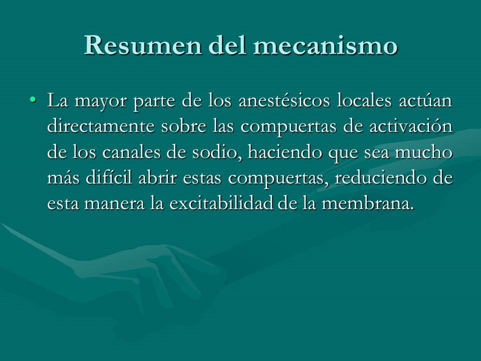 Resumen del mecanismo