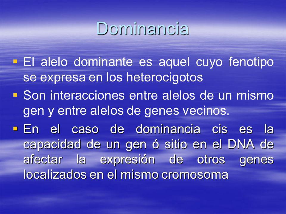 Dominancia El alelo dominante es aquel cuyo fenotipo se expresa en los heterocigotos.