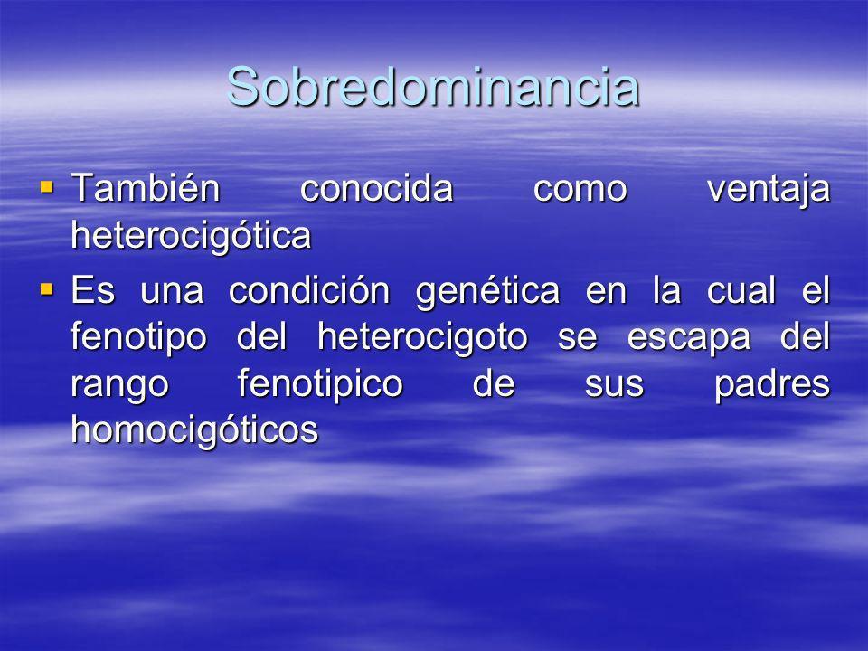 Sobredominancia También conocida como ventaja heterocigótica