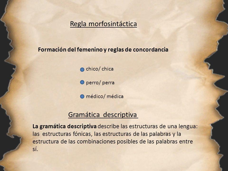 Regla morfosintáctica