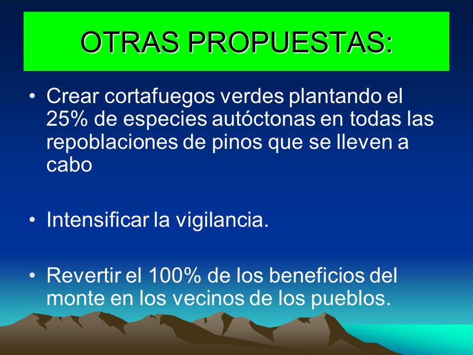 OTRAS PROPUESTAS: Crear cortafuegos verdes plantando el 25% de especies autóctonas en todas las repoblaciones de pinos que se lleven a cabo.