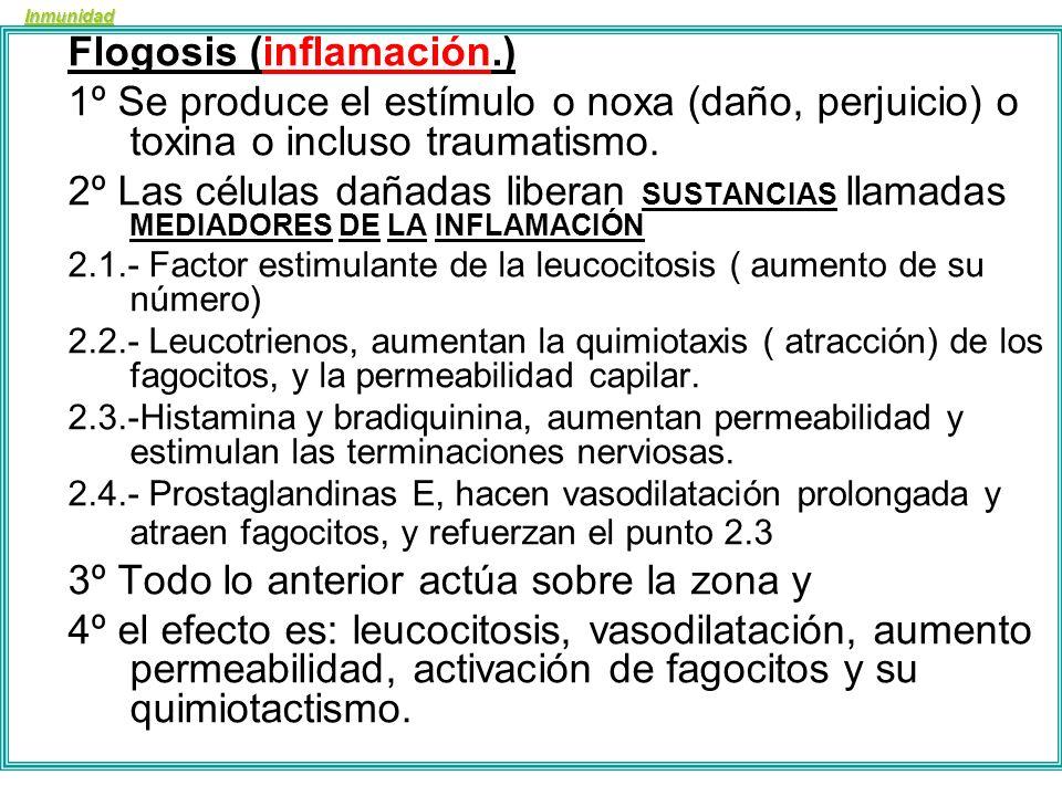 Flogosis (inflamación.)