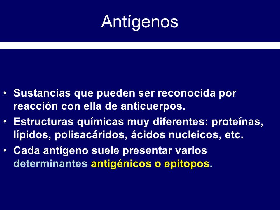 Antígenos Sustancias que pueden ser reconocida por reacción con ella de anticuerpos.