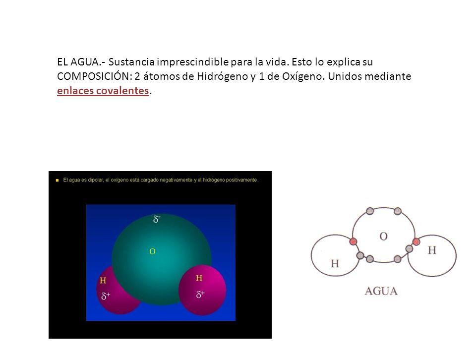 EL AGUA. - Sustancia imprescindible para la vida