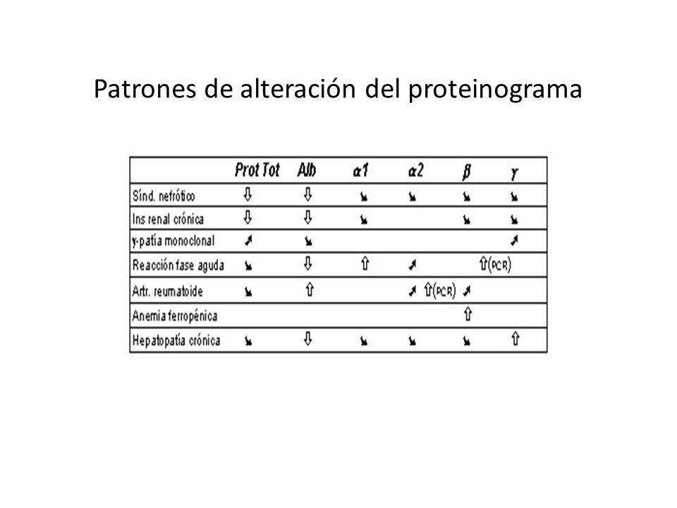 Patrones de alteración del proteinograma