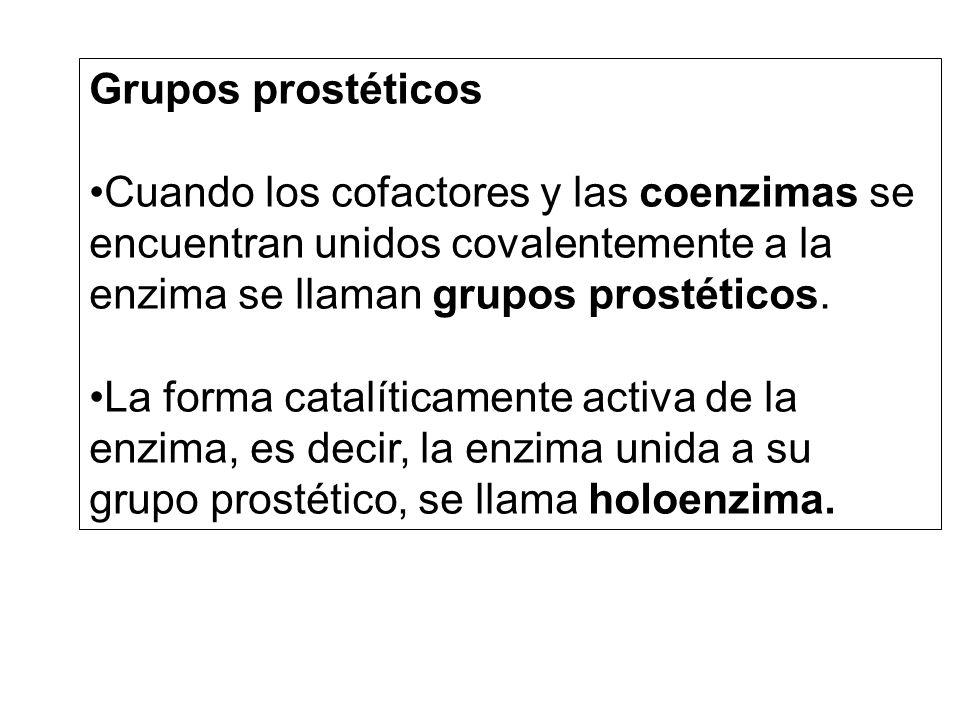 Grupos prostéticos Cuando los cofactores y las coenzimas se encuentran unidos covalentemente a la enzima se llaman grupos prostéticos.