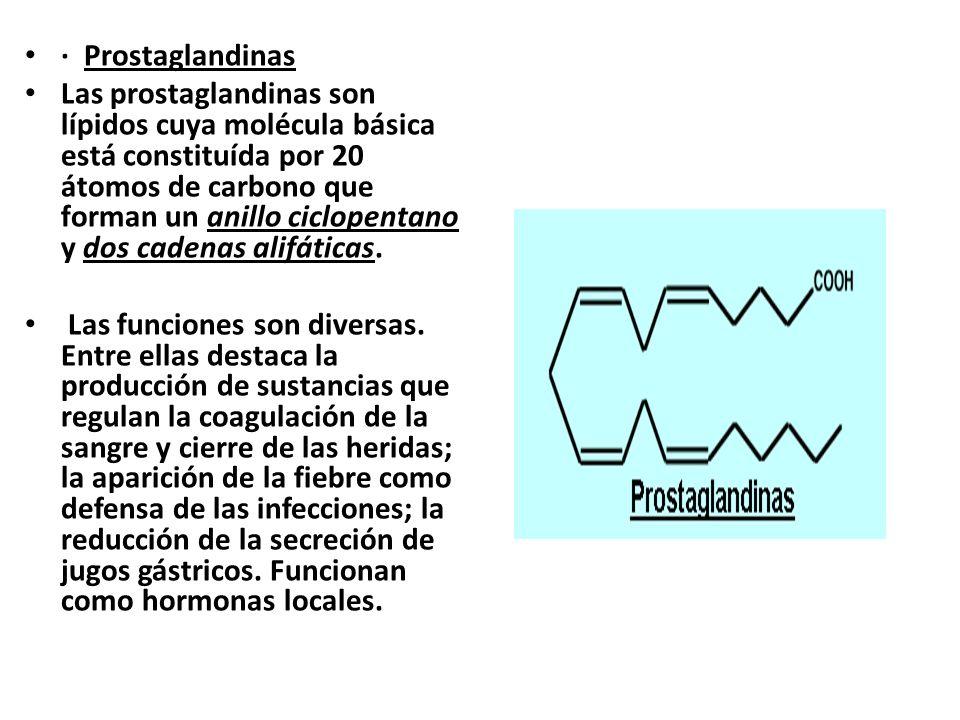· Prostaglandinas
