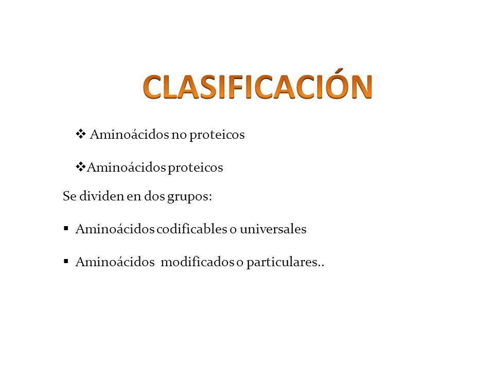 CLASIFICACIÓN Aminoácidos no proteicos Aminoácidos proteicos