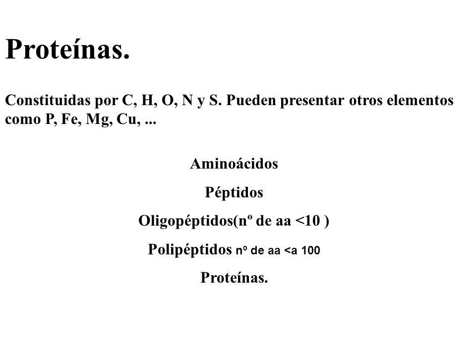 Oligopéptidos(nº de aa <10 ) Polipéptidos nº de aa <a 100