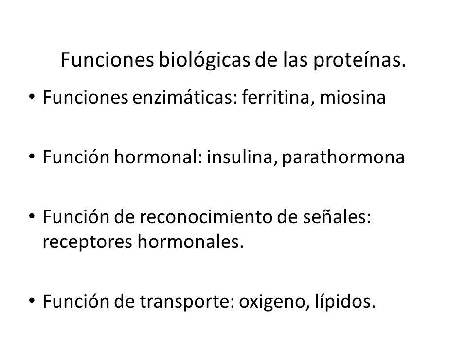 Funciones biológicas de las proteínas.