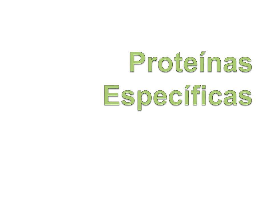 Proteínas Específicas