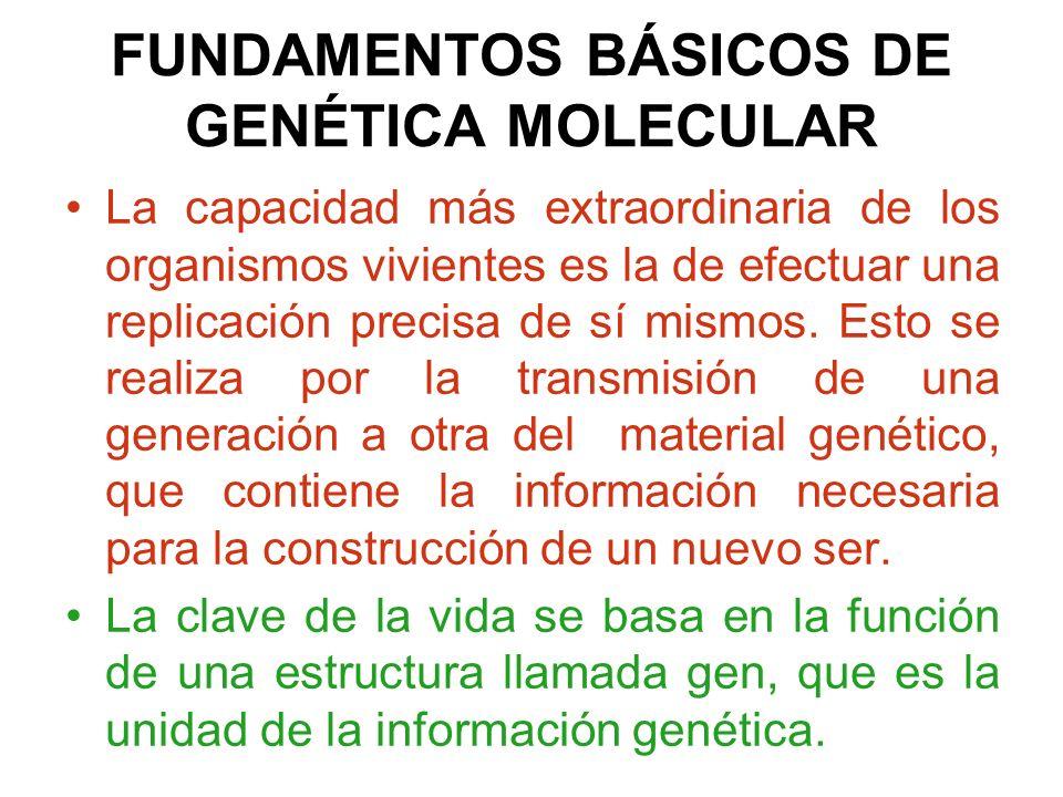 FUNDAMENTOS BÁSICOS DE GENÉTICA MOLECULAR