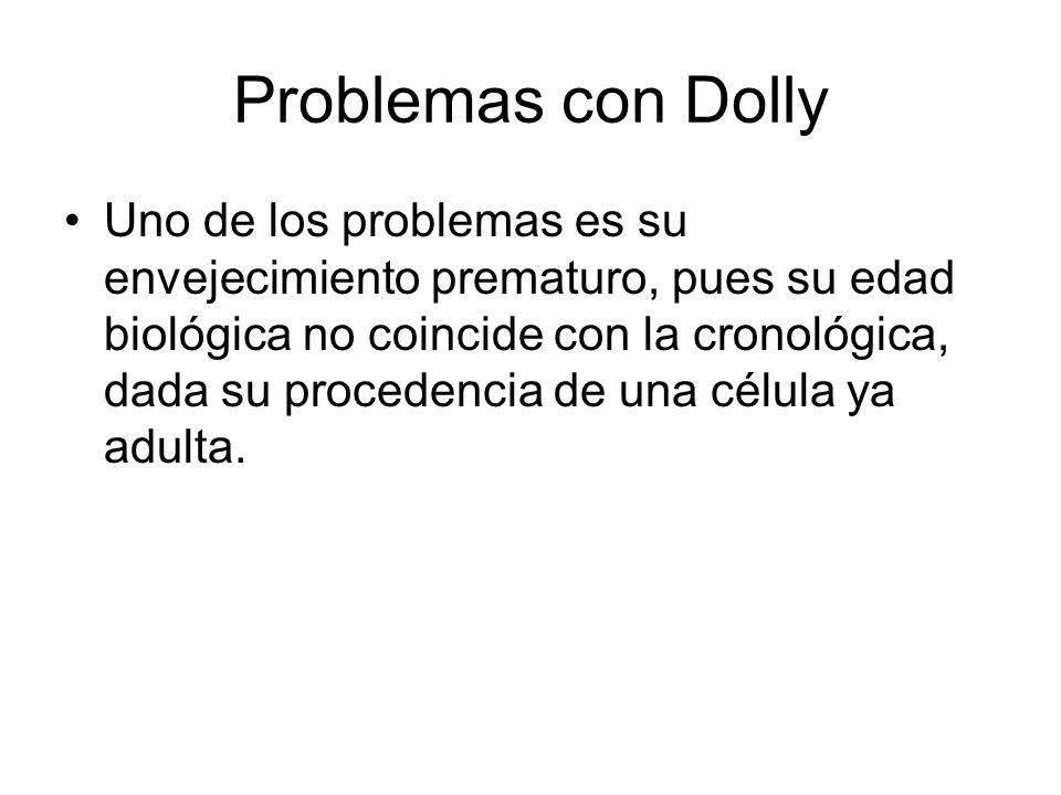 Problemas con Dolly