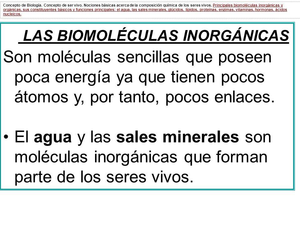 LAS BIOMOLÉCULAS INORGÁNICAS