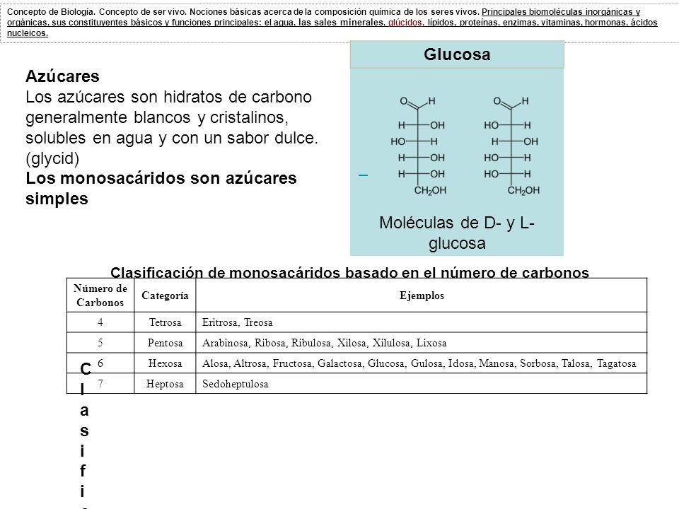 Clasificación de monosacáridos basado en el número de carbonos