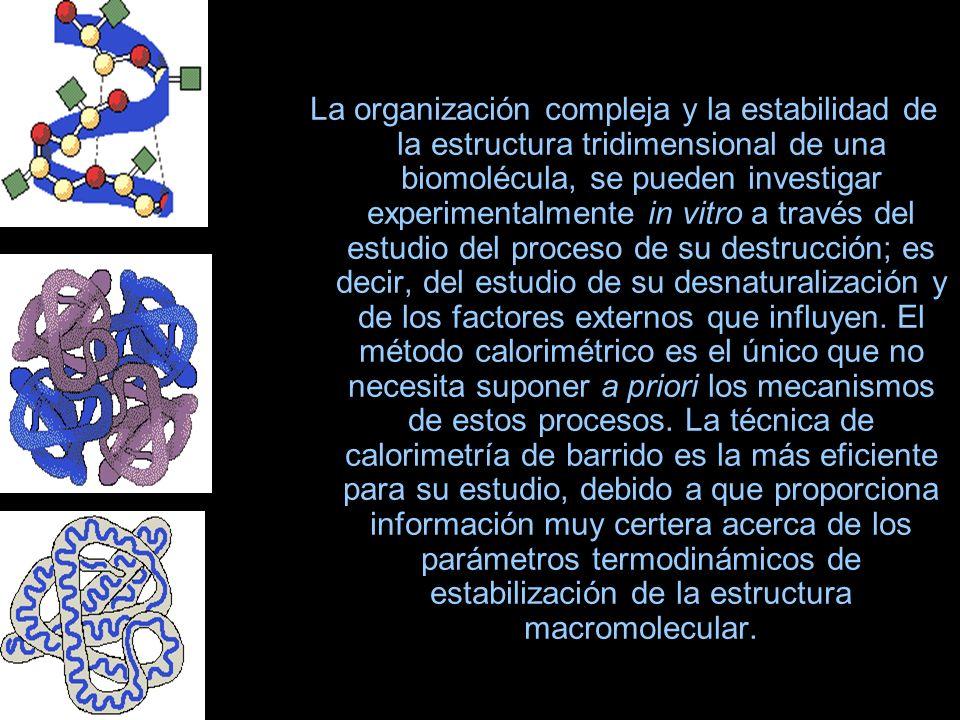 La organización compleja y la estabilidad de la estructura tridimensional de una biomolécula, se pueden investigar experimentalmente in vitro a través del estudio del proceso de su destrucción; es decir, del estudio de su desnaturalización y de los factores externos que influyen.