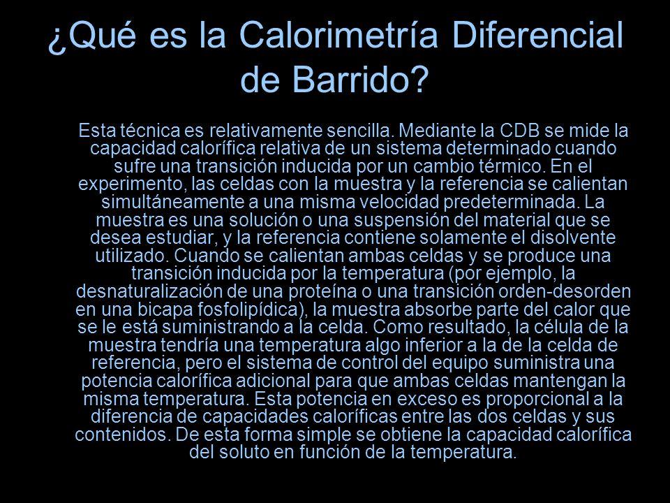 ¿Qué es la Calorimetría Diferencial de Barrido