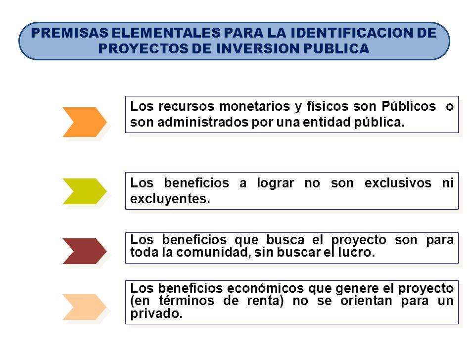 PREMISAS ELEMENTALES PARA LA IDENTIFICACION DE PROYECTOS DE INVERSION PUBLICA