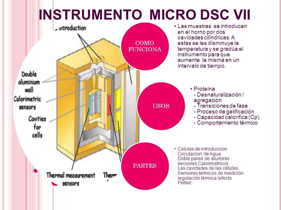 INSTRUMENTO MICRO DSC VII
