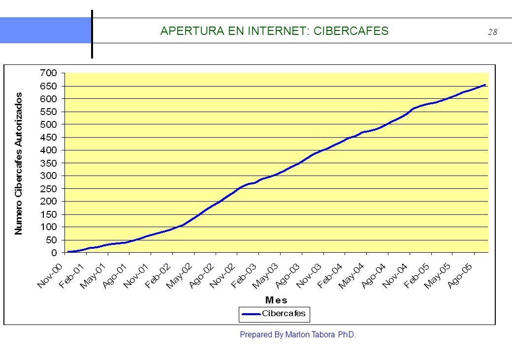 APERTURA EN INTERNET: CIBERCAFES