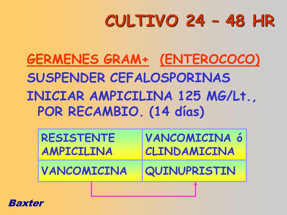 CULTIVO 24 – 48 HR GERMENES GRAM+ (ENTEROCOCO)