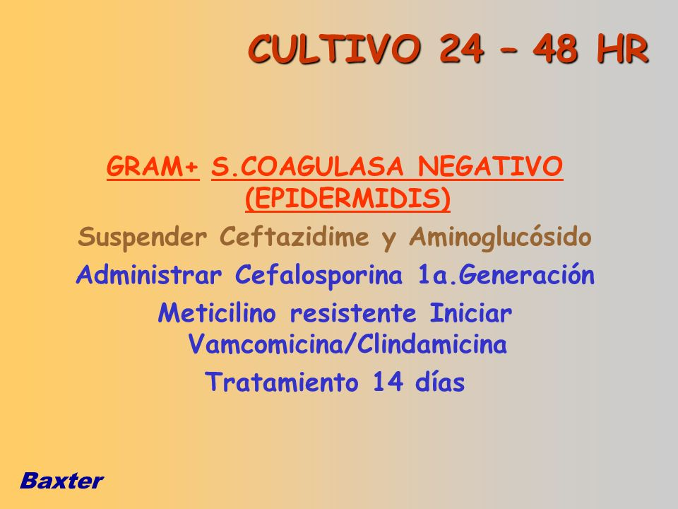 CULTIVO 24 – 48 HR GRAM+ S.COAGULASA NEGATIVO (EPIDERMIDIS)