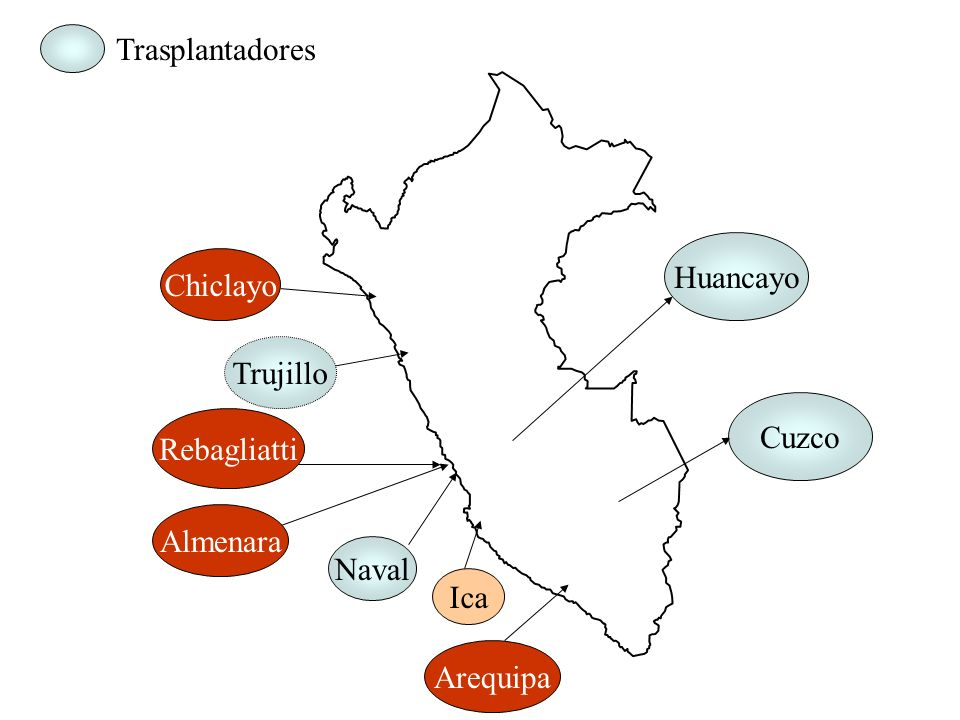 Trasplantadores Huancayo Chiclayo Trujillo Cuzco Rebagliatti Almenara Naval Ica Arequipa