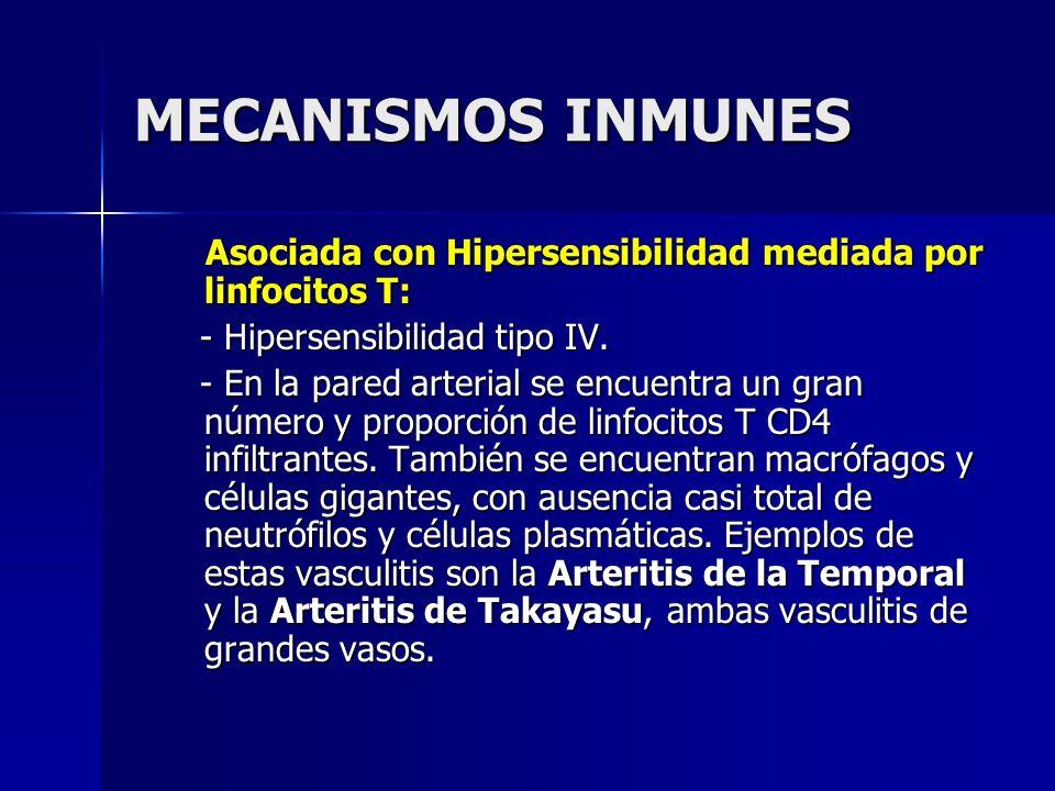 MECANISMOS INMUNES Asociada con Hipersensibilidad mediada por linfocitos T: - Hipersensibilidad tipo IV.
