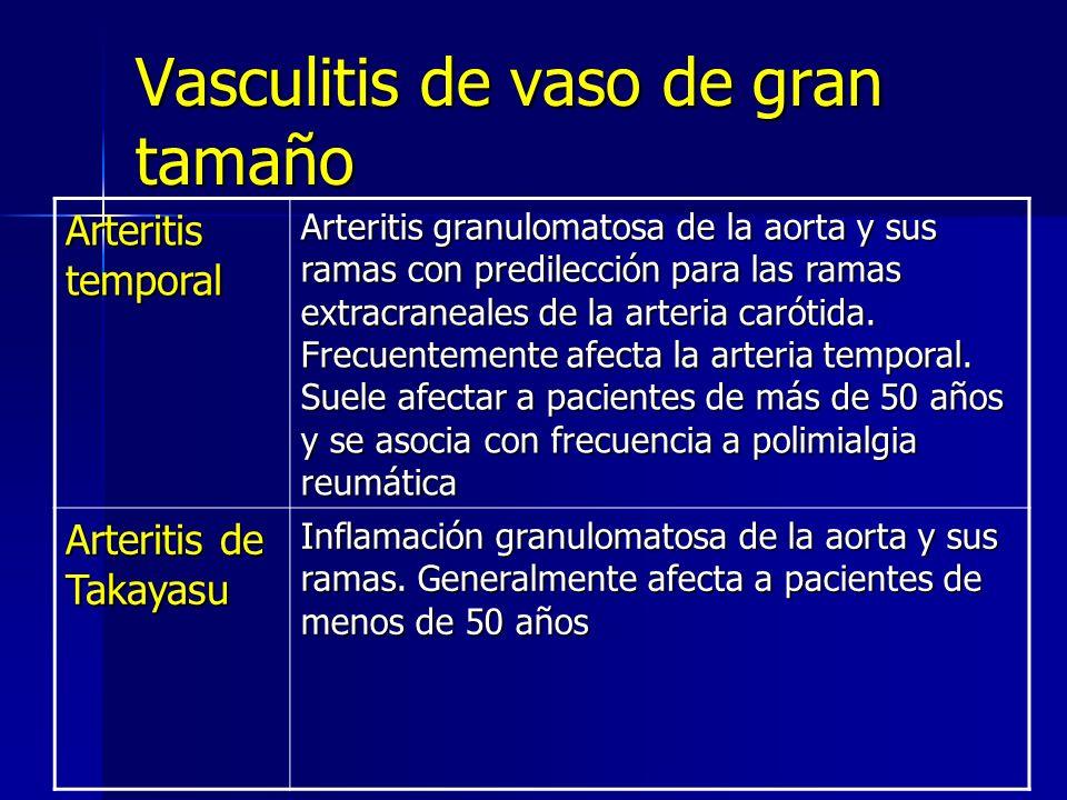 Vasculitis de vaso de gran tamaño