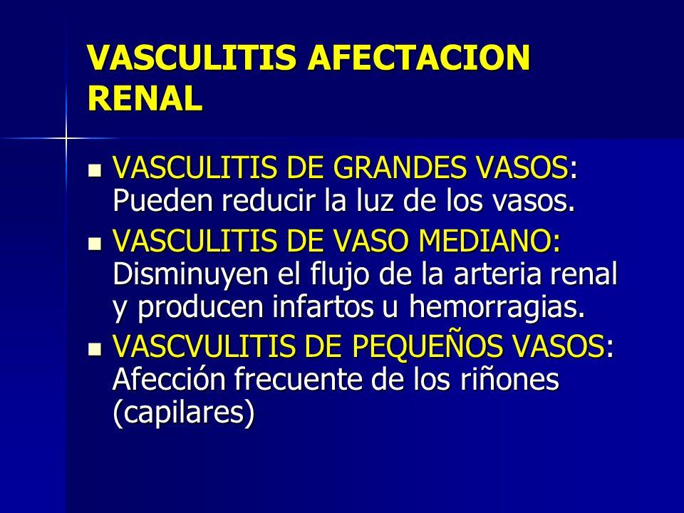 VASCULITIS AFECTACION RENAL
