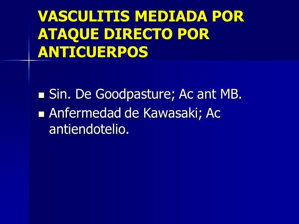 VASCULITIS MEDIADA POR ATAQUE DIRECTO POR ANTICUERPOS