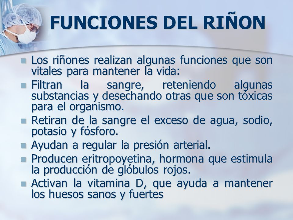 FUNCIONES DEL RIÑON Los riñones realizan algunas funciones que son vitales para mantener la vida: