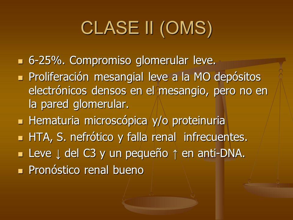 CLASE II (OMS) 6-25%. Compromiso glomerular leve.