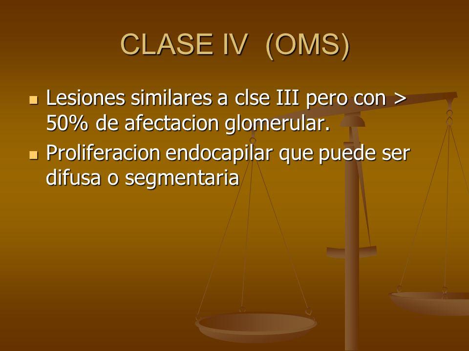CLASE IV (OMS) Lesiones similares a clse III pero con > 50% de afectacion glomerular.