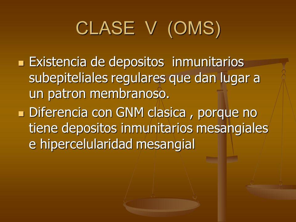 CLASE V (OMS) Existencia de depositos inmunitarios subepiteliales regulares que dan lugar a un patron membranoso.