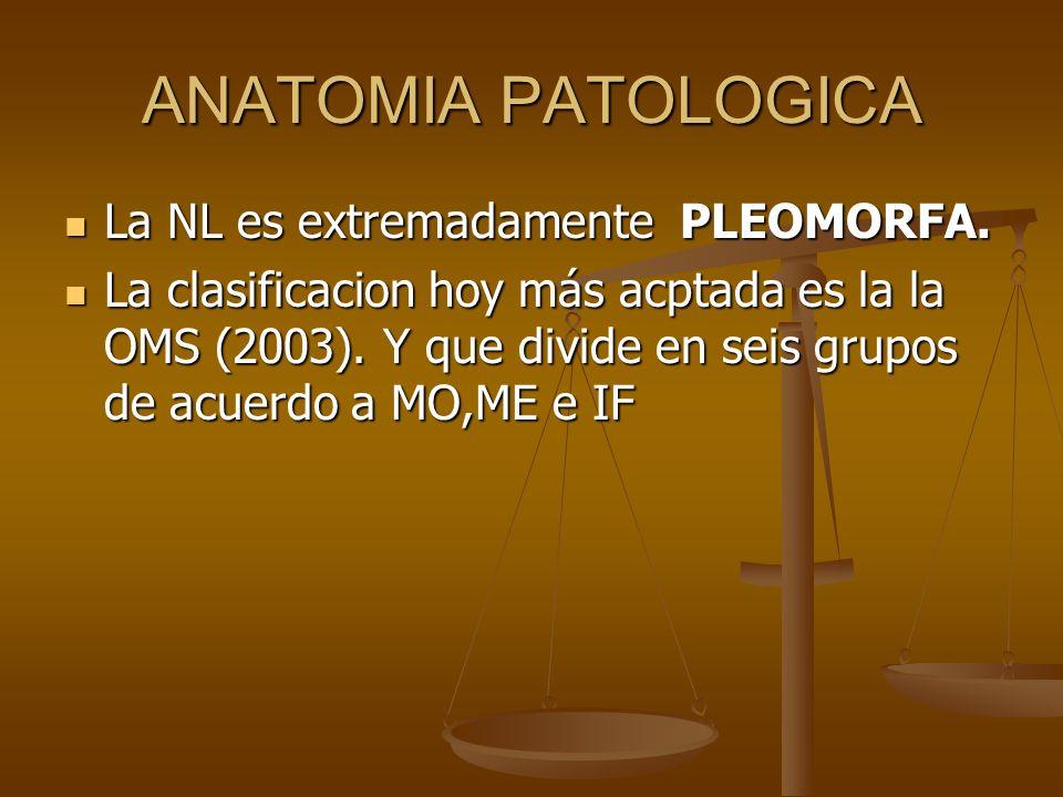 ANATOMIA PATOLOGICA La NL es extremadamente PLEOMORFA.