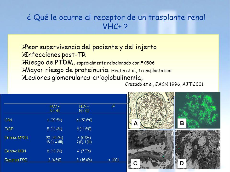 ¿ Qué le ocurre al receptor de un trasplante renal VHC+