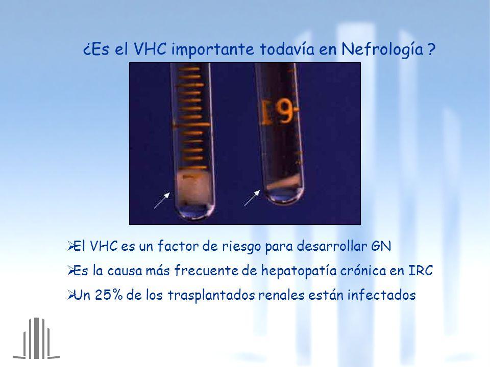 ¿Es el VHC importante todavía en Nefrología