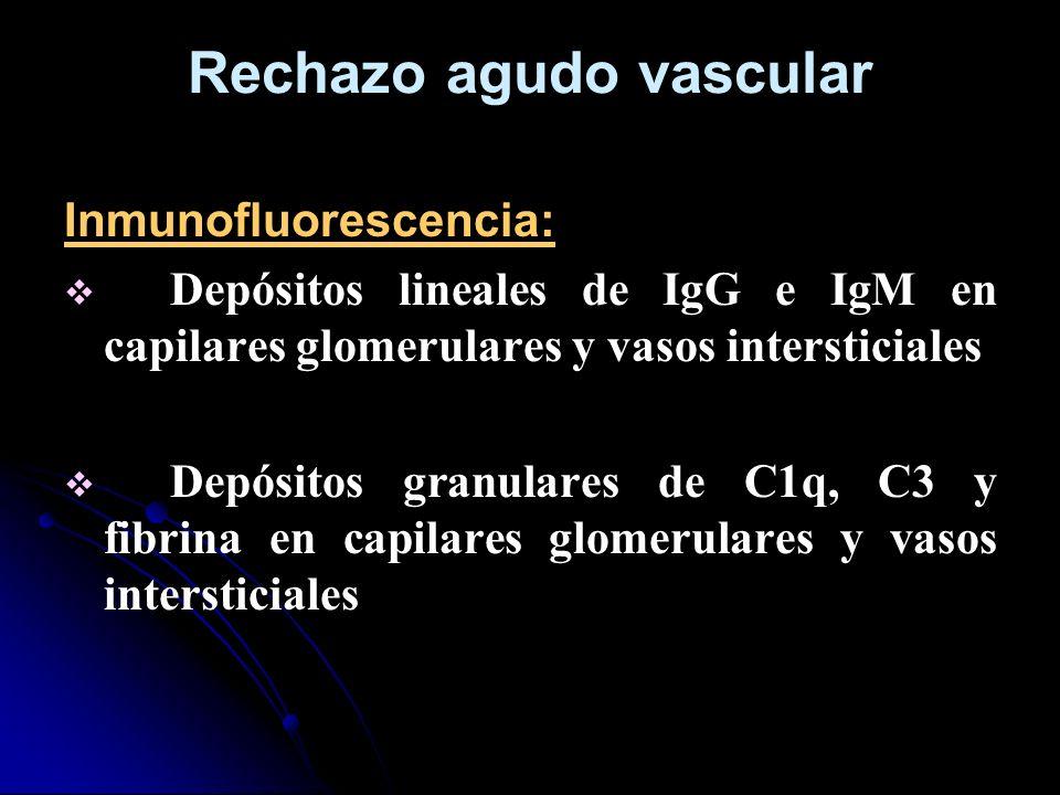Rechazo agudo vascular