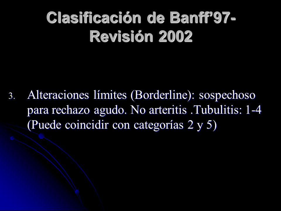 Clasificación de Banff'97- Revisión 2002