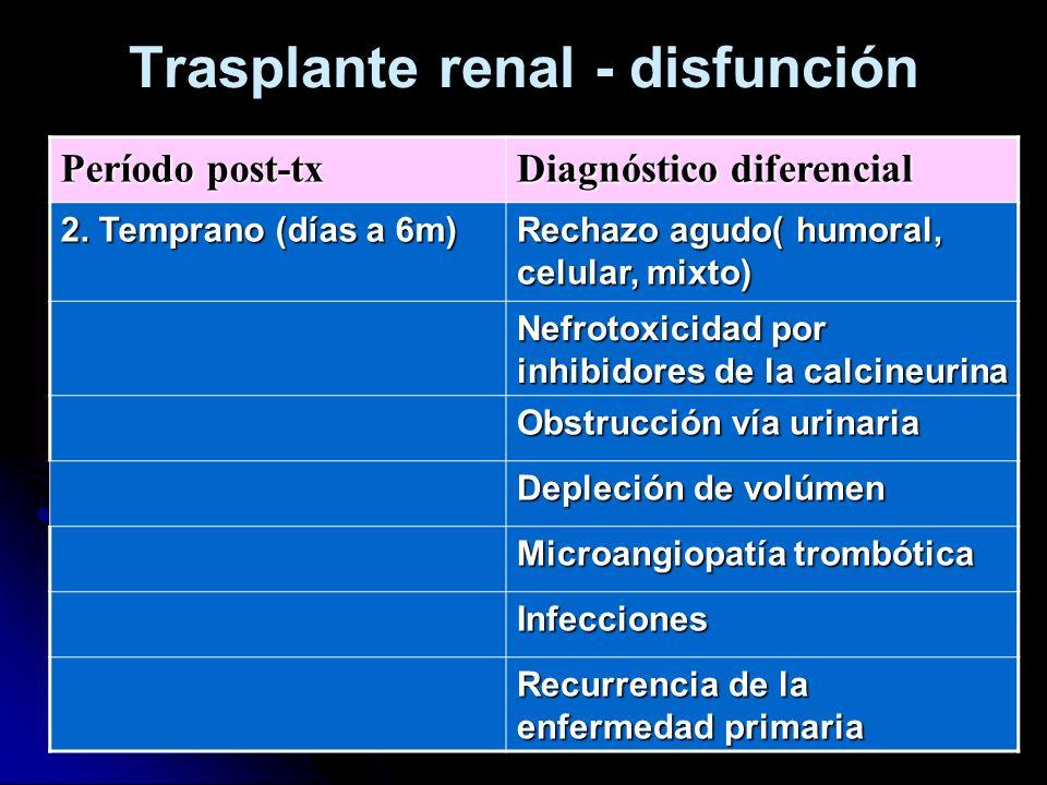 Trasplante renal - disfunción