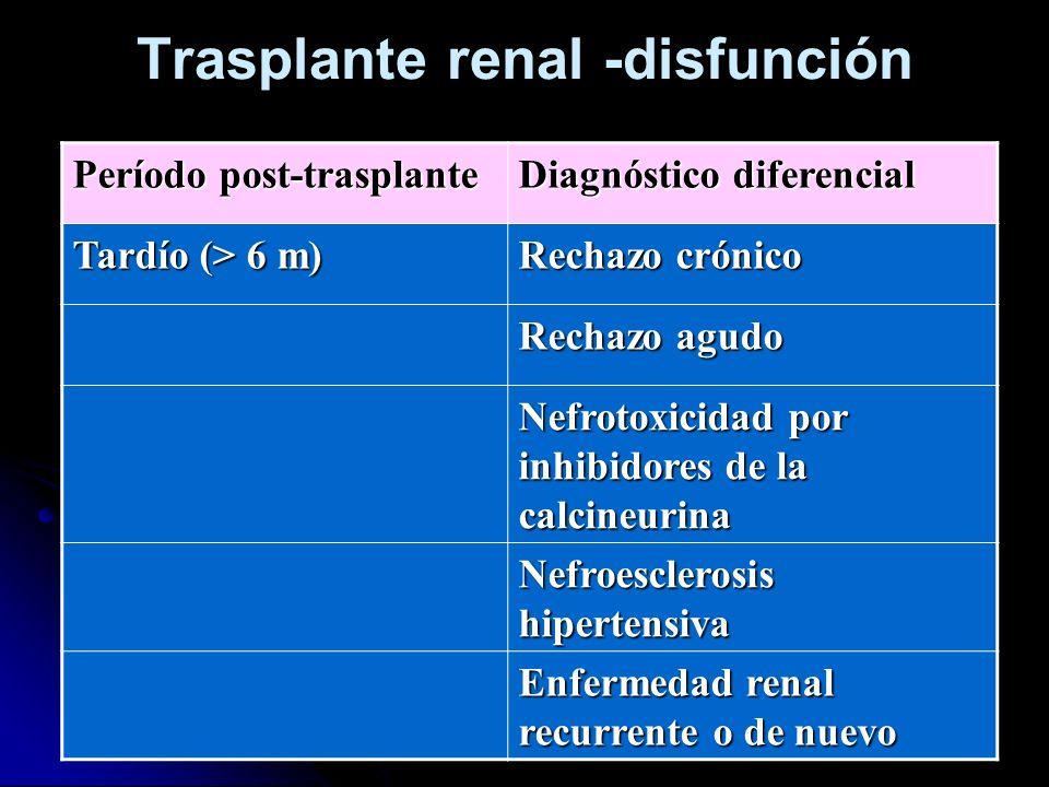 Trasplante renal -disfunción