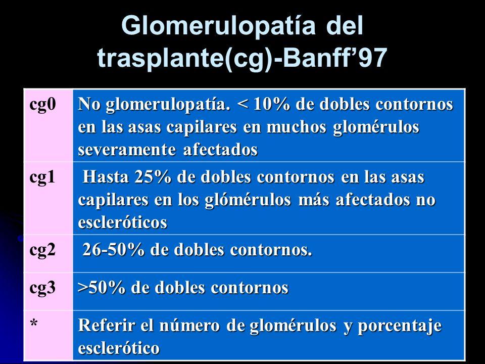 Glomerulopatía del trasplante(cg)-Banff'97