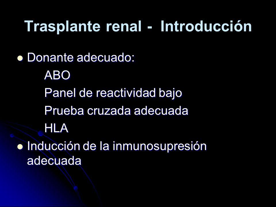 Trasplante renal - Introducción