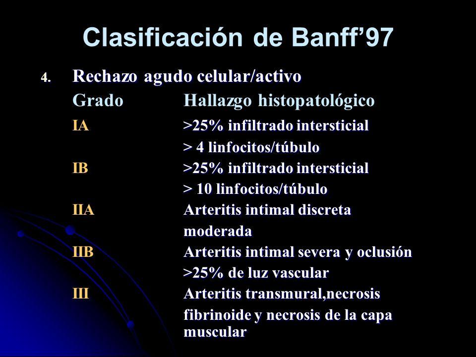 Clasificación de Banff'97