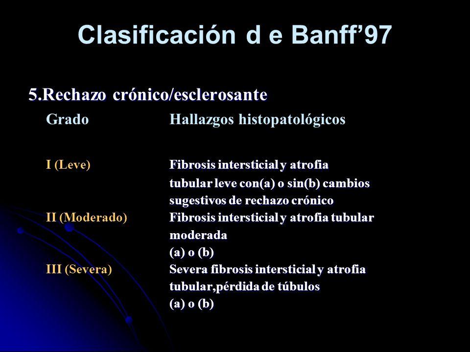 Clasificación d e Banff'97